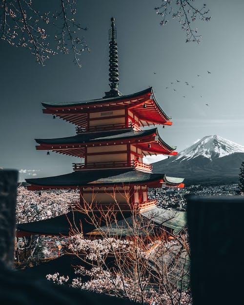 Δωρεάν στοκ φωτογραφιών με shinto, αρχαίος, αρχιτεκτονική, Ασιατική αρχιτεκτονική