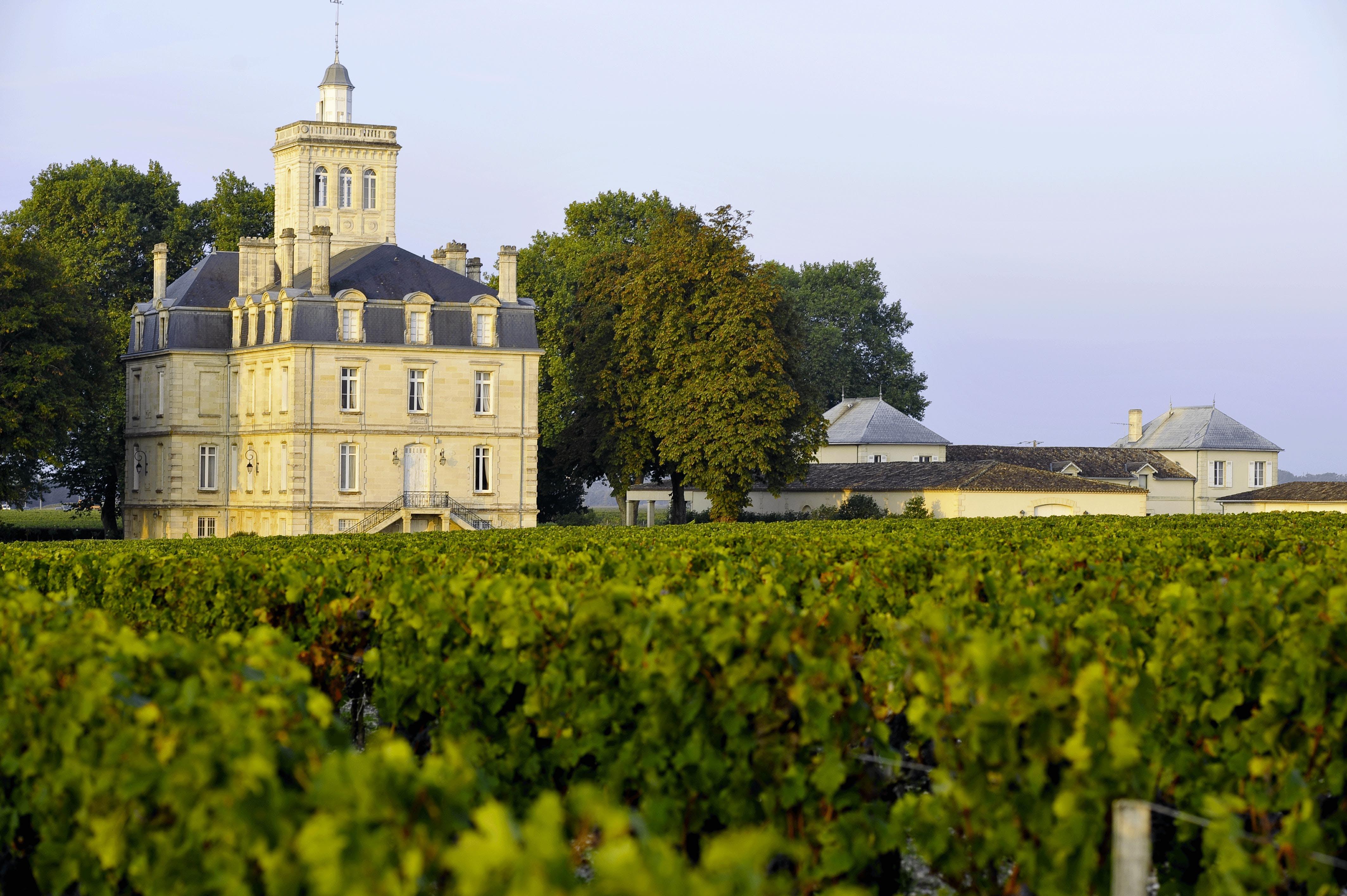 Free stock photo of chateaux bordeaux, chateaux vignes, haut medoc, vin