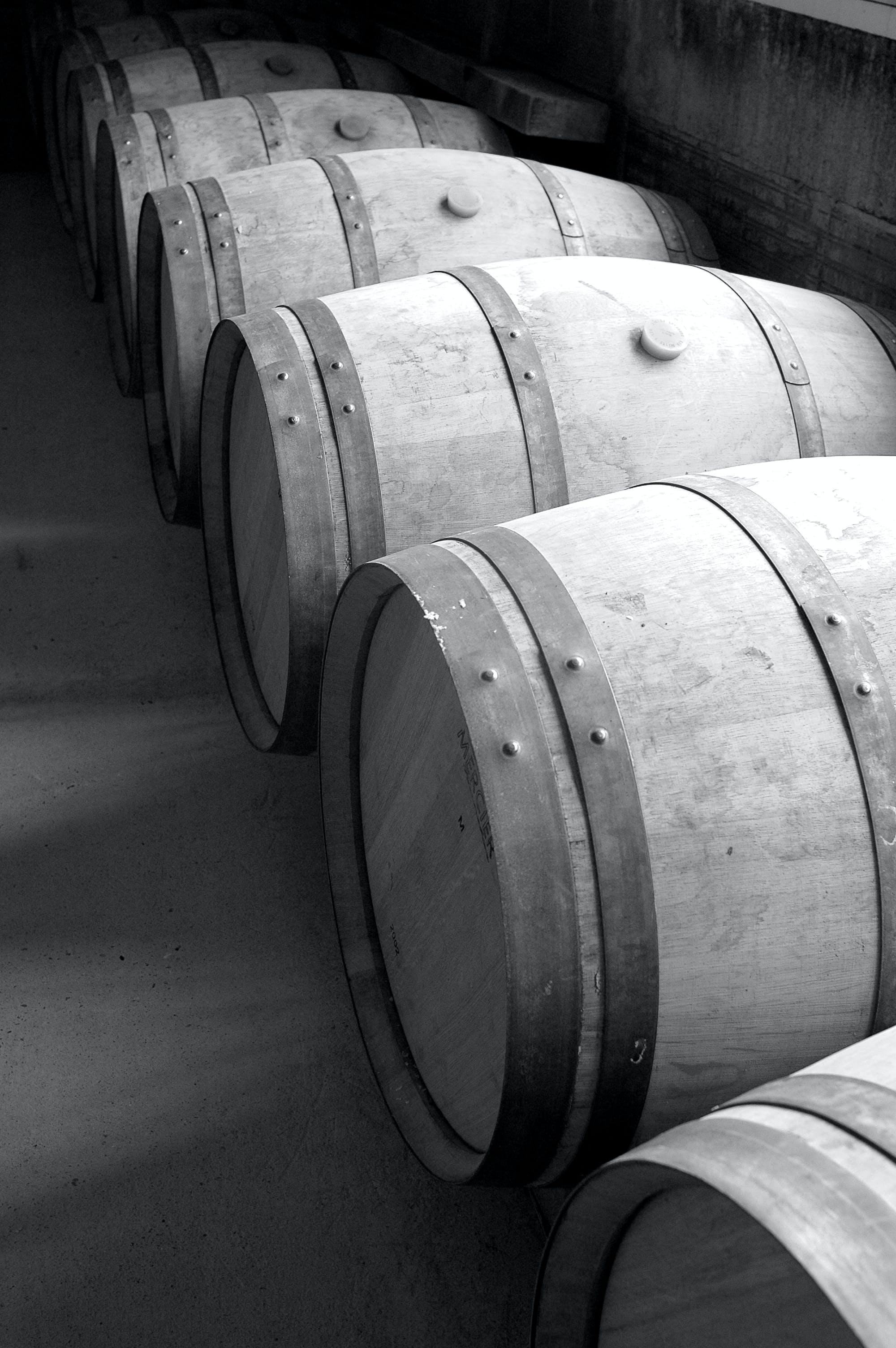 Free stock photo of barrique de vin, bordeaux, chai, vin