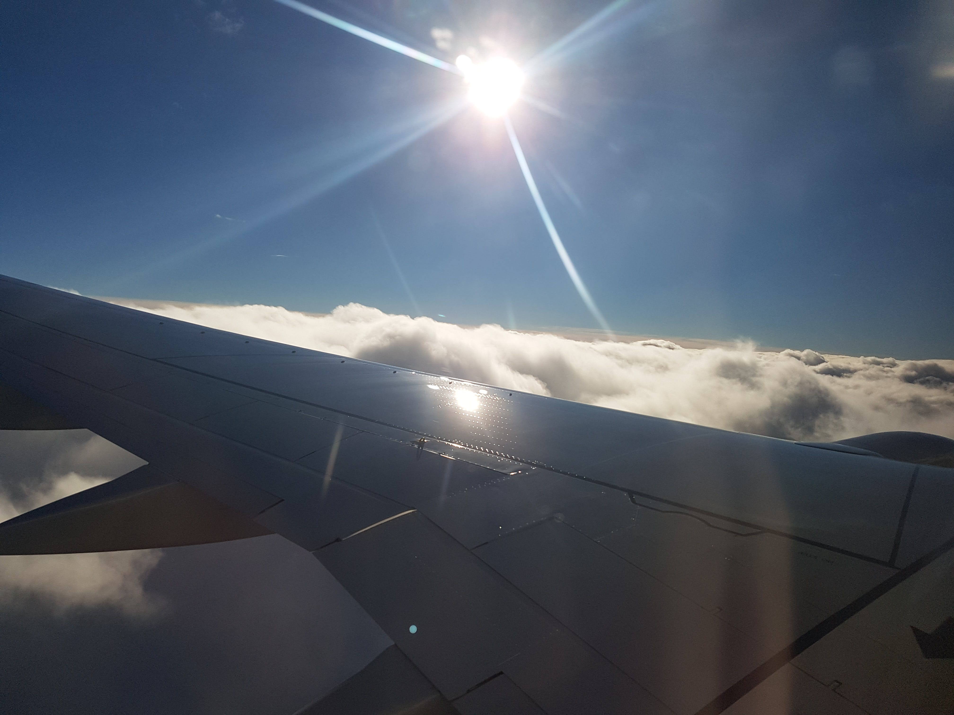 Free stock photo of airplane wing above clouds sunny day
