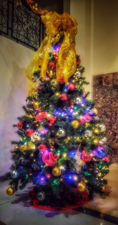 Základová fotografie zdarma na téma arbol, navidad