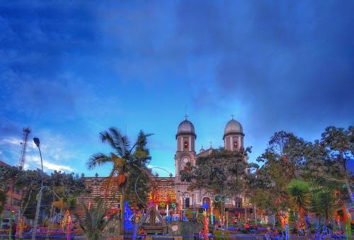 Imagine de stoc gratuită din arbol, iglesia, parque