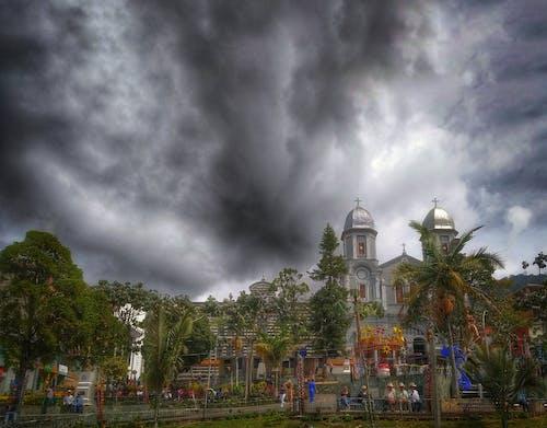 Základová fotografie zdarma na téma arbol, iglesia, parque