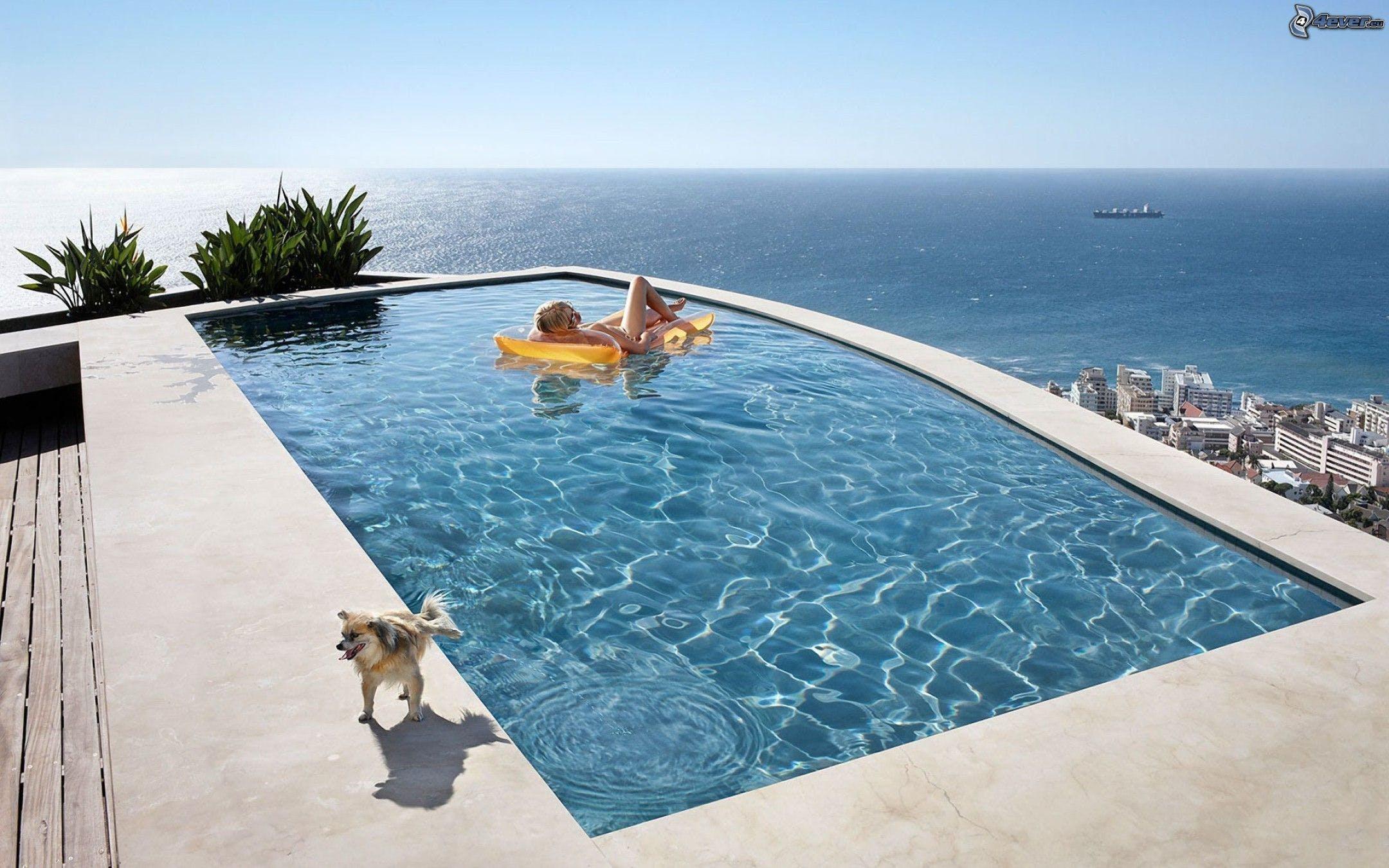Free stock photo of ocean, pool