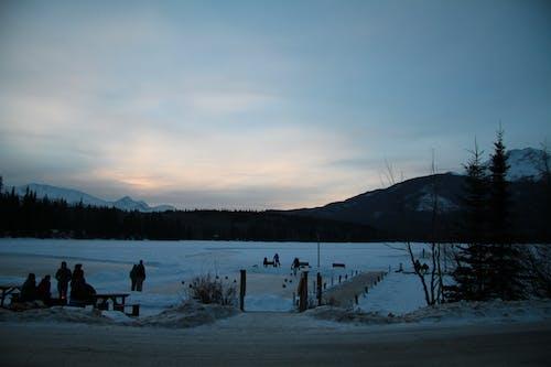 Fotos de stock gratuitas de Alberta, Canadá, canadiense, curling