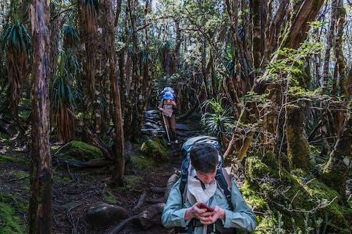 Free stock photo of hiking, Overland Track, tasmania