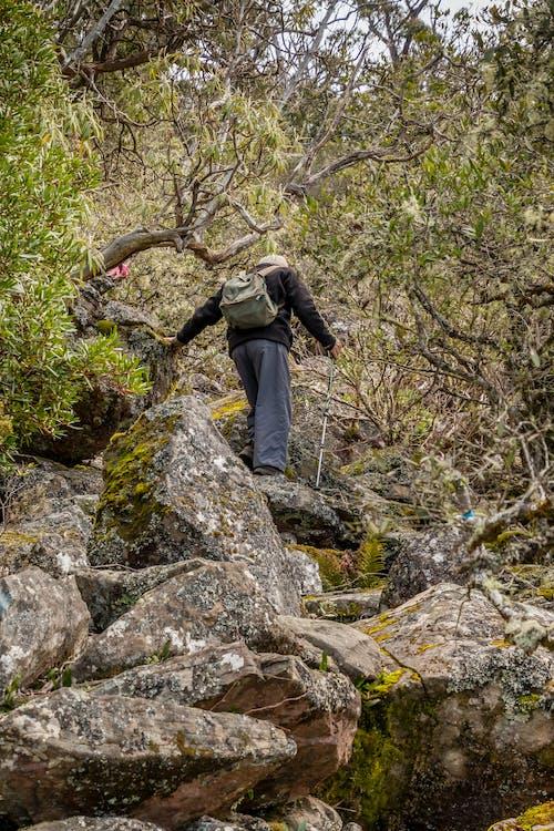 Free stock photo of hiking, mountain hiking, tasmania