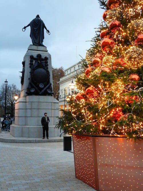 Imagine de stoc gratuită din Anglia, arbore, Crăciun, fleacurile