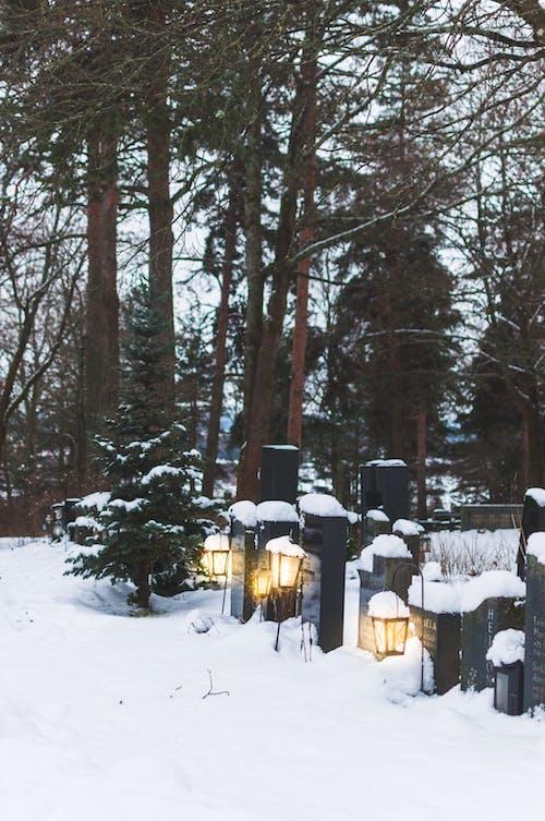 Imagine de stoc gratuită din cimitir, felinare, Finlanda, frig