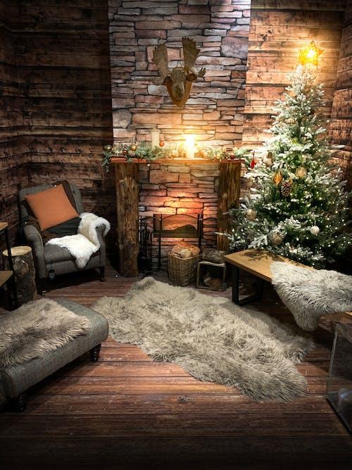 Imagine de stoc gratuită din arbore, cabană, cameră, confortabil