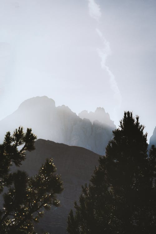 Trees and Mountains during Day