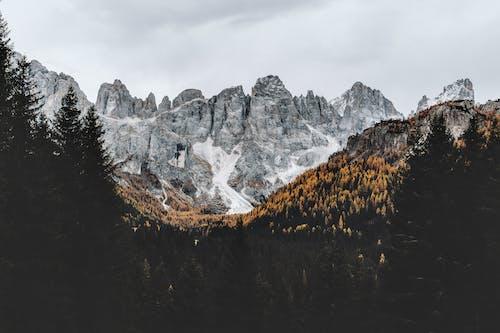 Gray Rocky Mountain