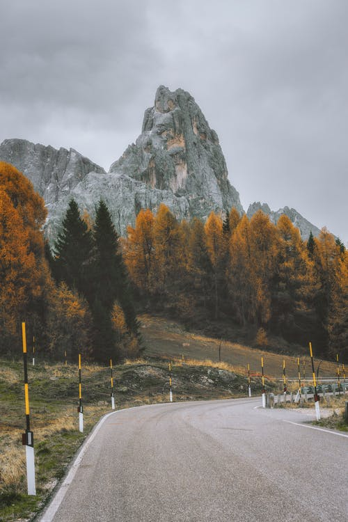 ağaçlar, asfalt yok, boş, çevre içeren Ücretsiz stok fotoğraf