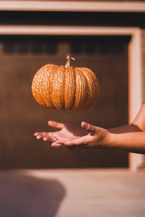 Pumpkin Above Hands