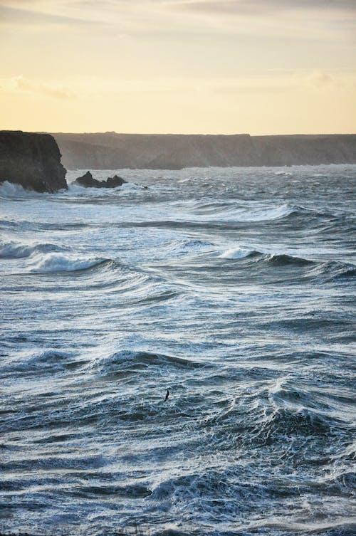 Základová fotografie zdarma na téma mořské vlny, útesy na pobřeží