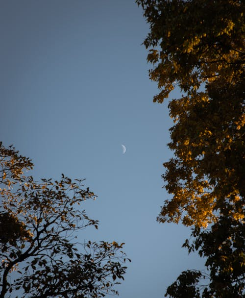 #outdoorchallenge, 光, 冒險, 半月 的 免费素材照片