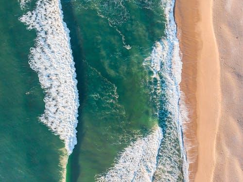Immagine gratuita di acqua, aereo, bagnasciuga, brasile