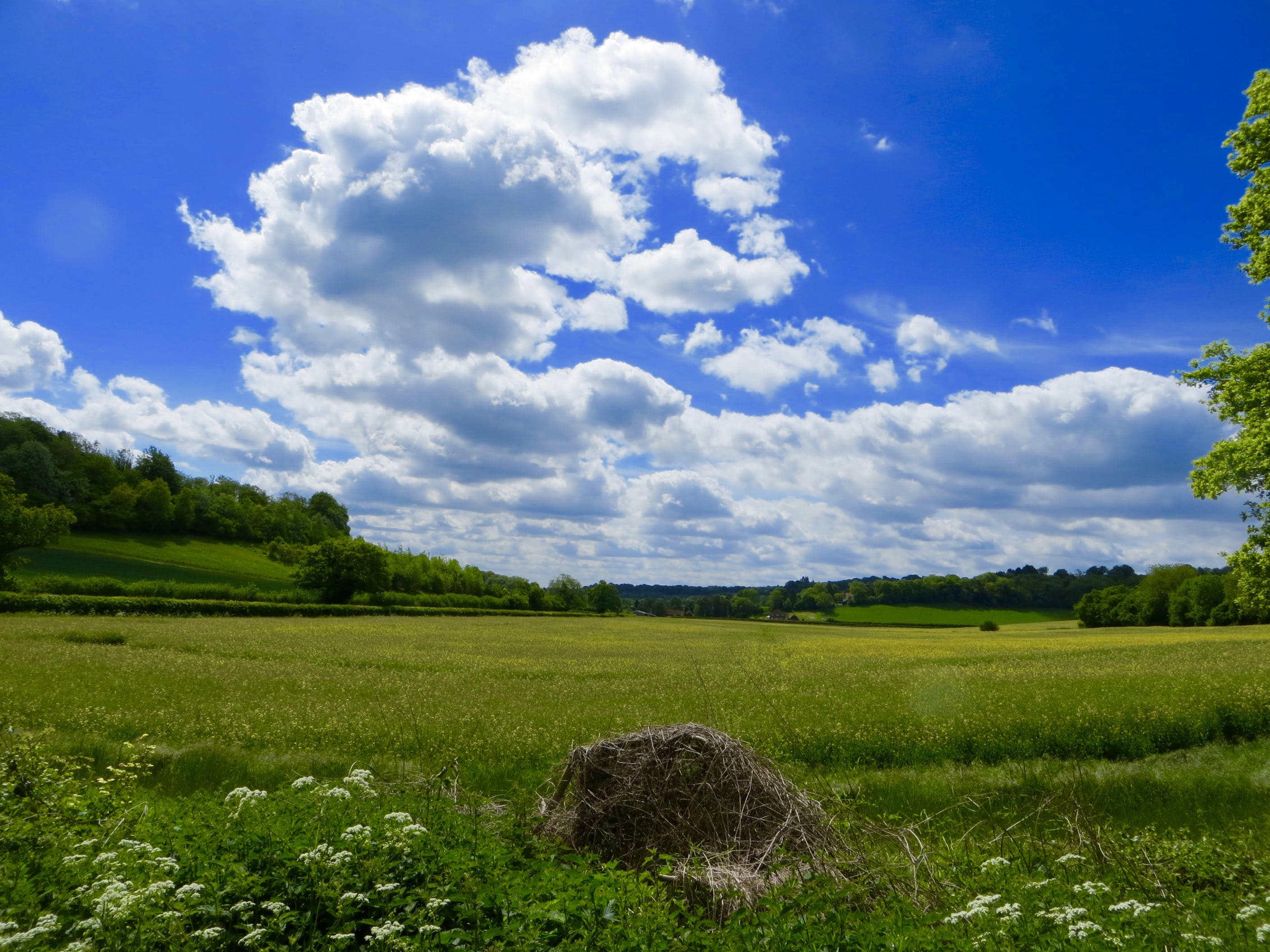 bright, cloud, countryside