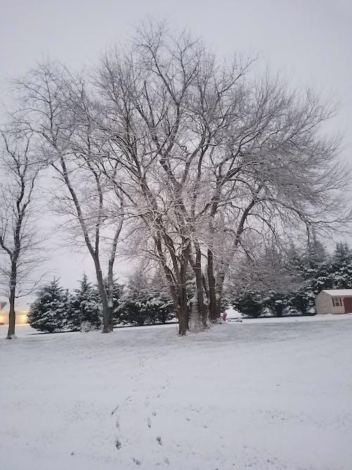 Δωρεάν στοκ φωτογραφιών με Εξωτερικός χώρος, χειμώνας, χειμωνιάτικες μπότες, χιονισμένο βουνό