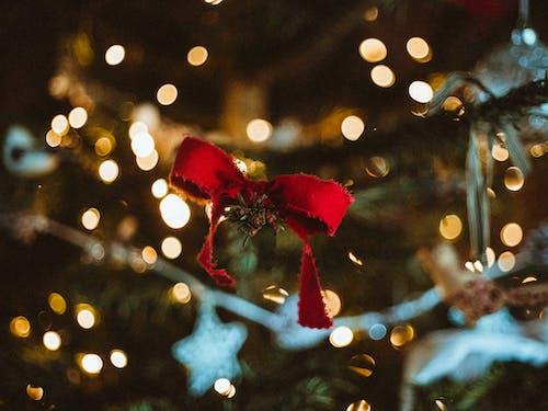 Ilmainen kuvapankkikuva tunnisteilla bokeh, epätarkka, joulu, joulukoristeet