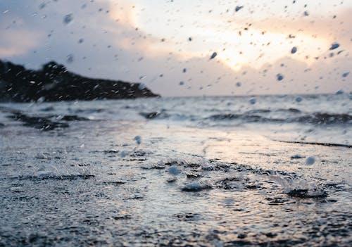 Free stock photo of splash, water