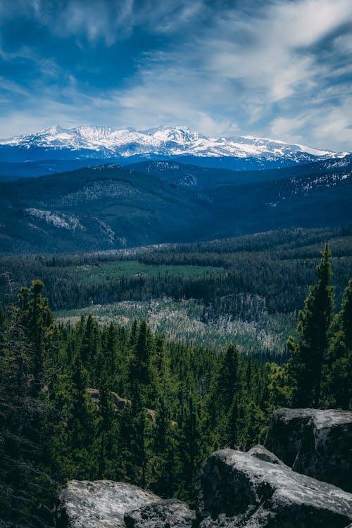 Kostenloses Stock Foto zu baum, berg, blau, campen