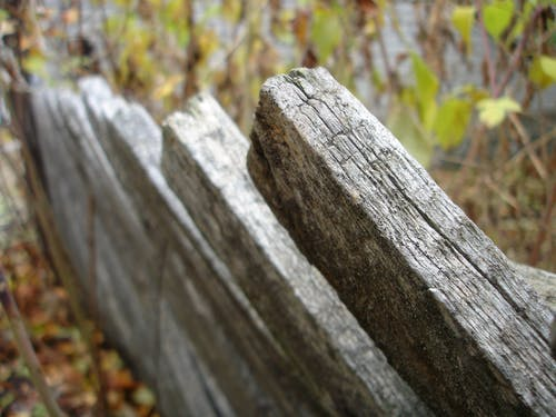 Free stock photo of close up, fence, structure, wood