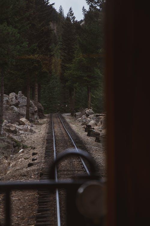 Free stock photo of railroad, train, train tracks