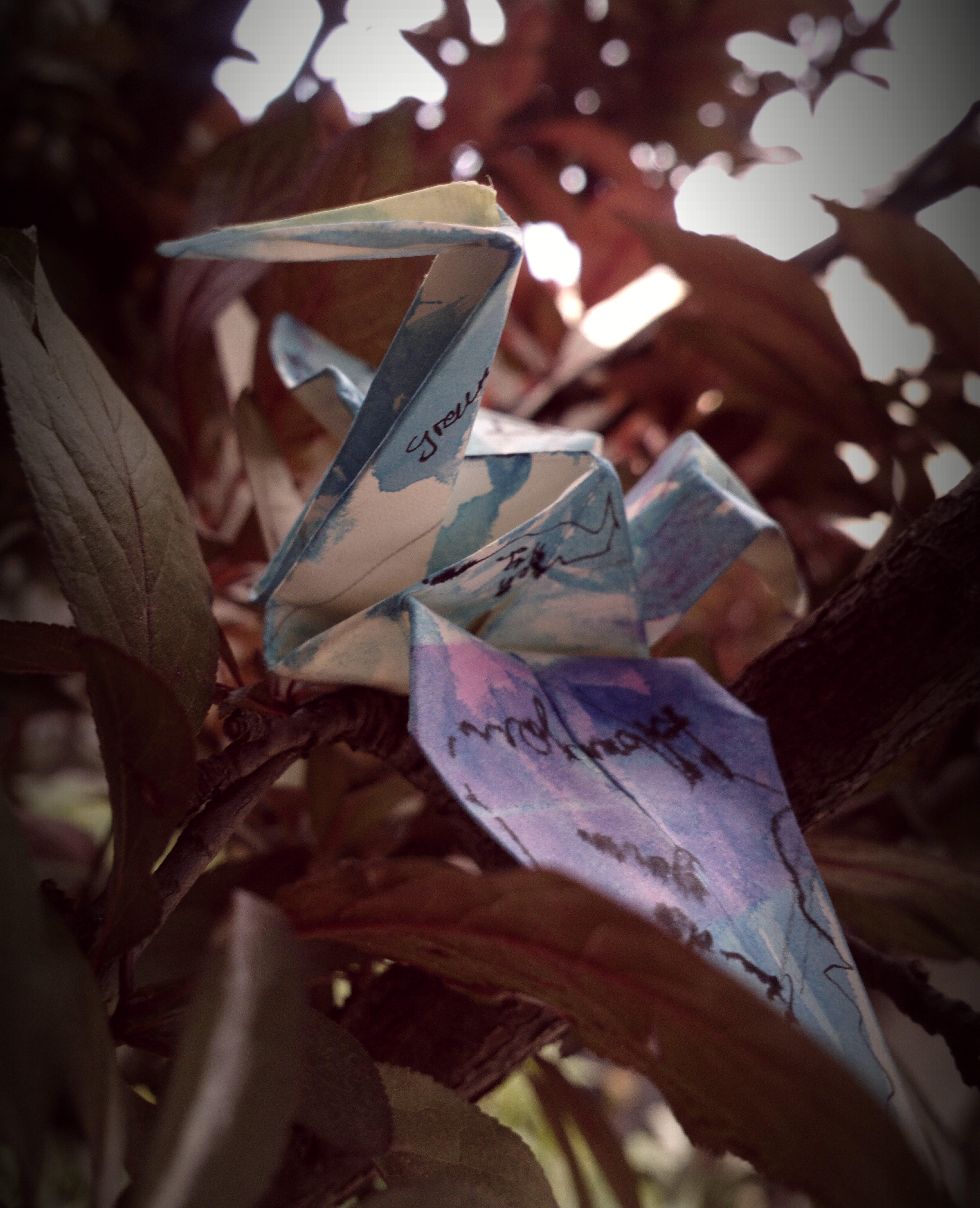 Free stock photo of bird, conceptual, origami, paper