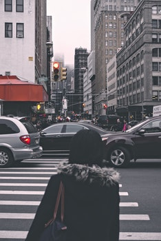 Free stock photo of city, cars, crossing, road