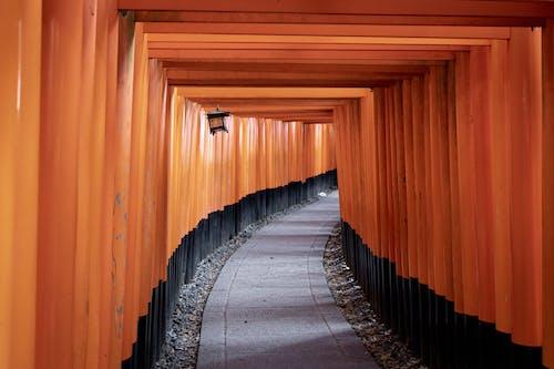 Kostenloses Stock Foto zu japan, perspektive, pfad, shinto-schrein