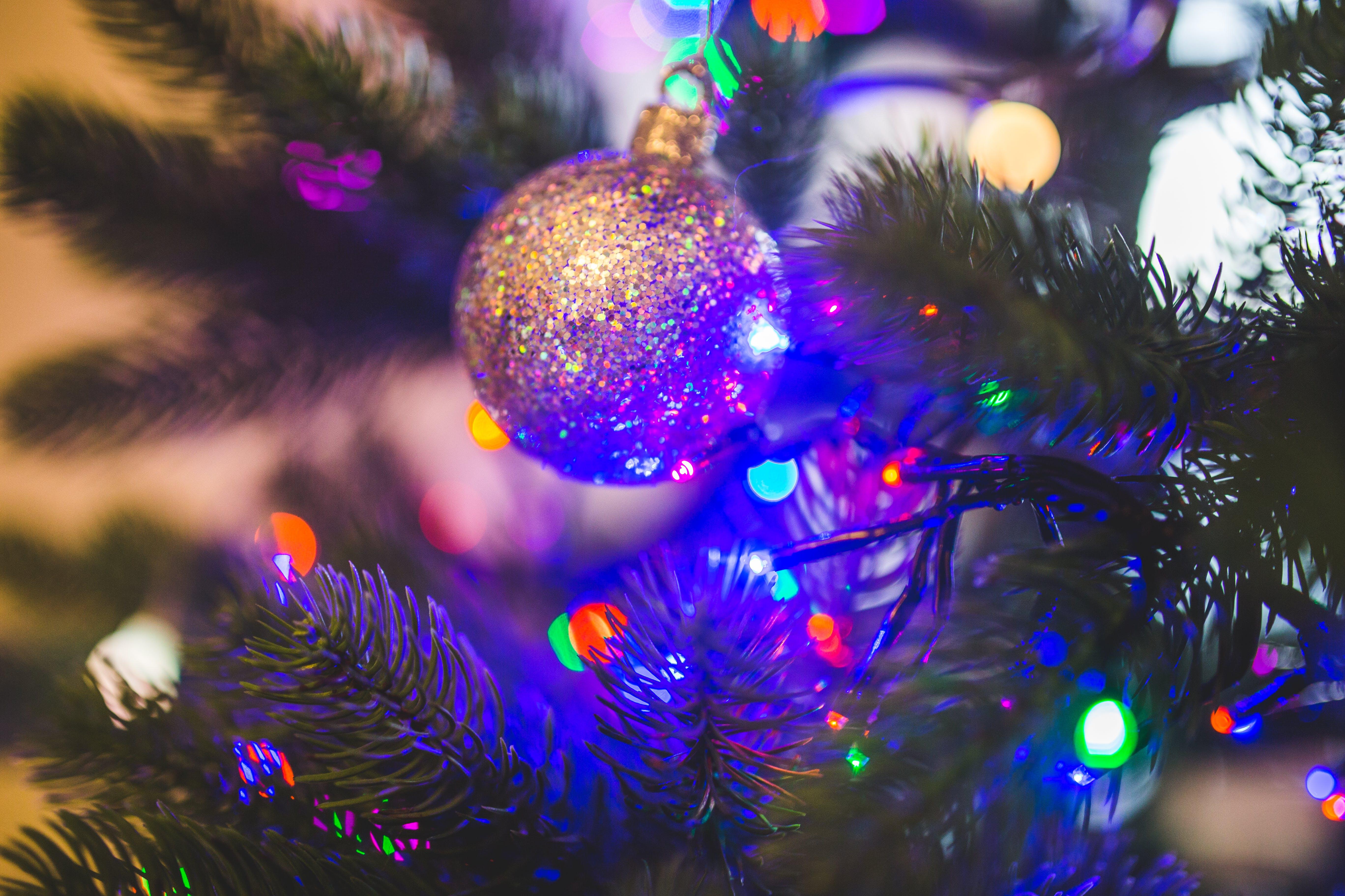 Christmas Ball on Green Christmas Tree