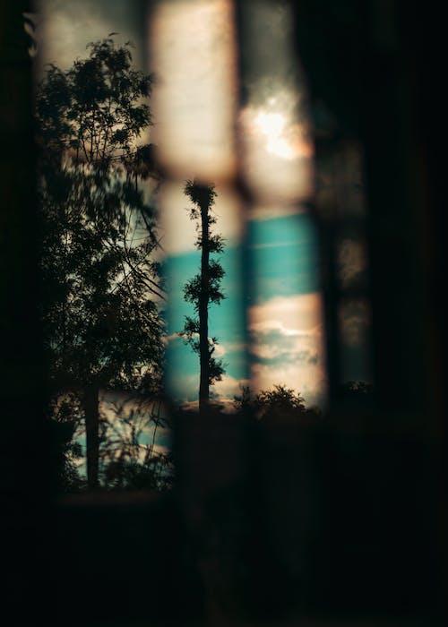 Free stock photo of light reflection, reflect, window