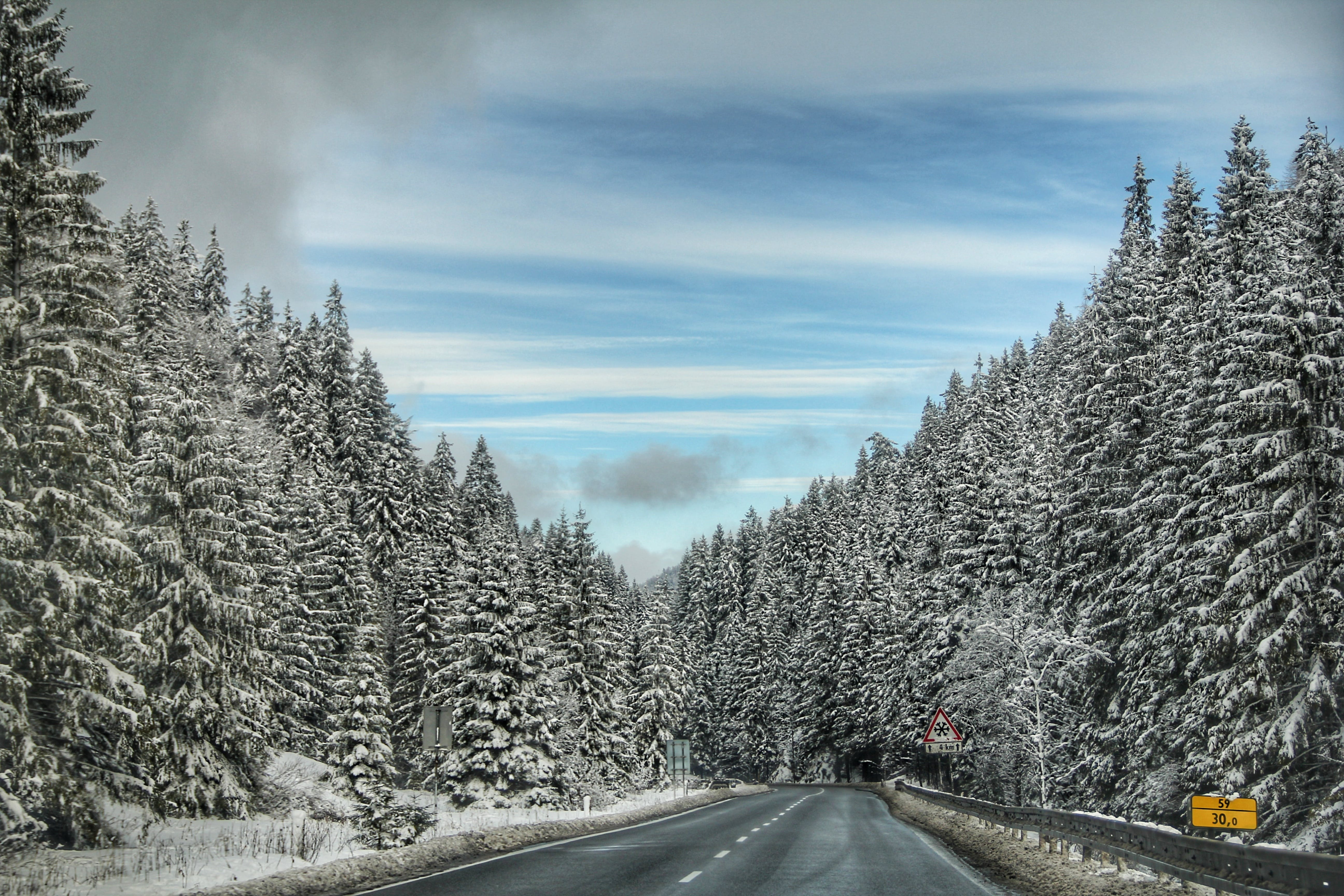 Free stock photo of snow, road, forest, winter