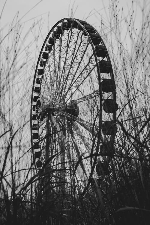 人, 公園, 冒險, 城市 的 免费素材照片