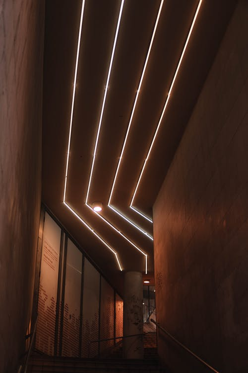 Photo Of Ceiling With Vertical Lightings