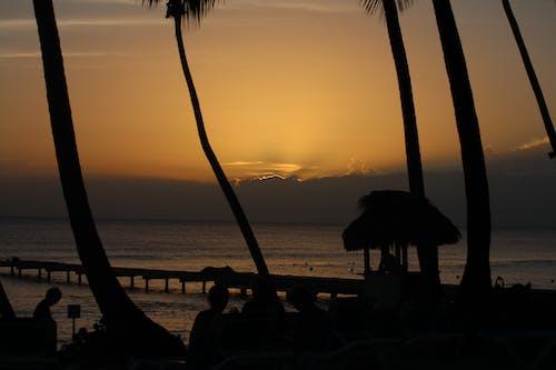 Foto d'estoc gratuïta de bayahibe república dominicana
