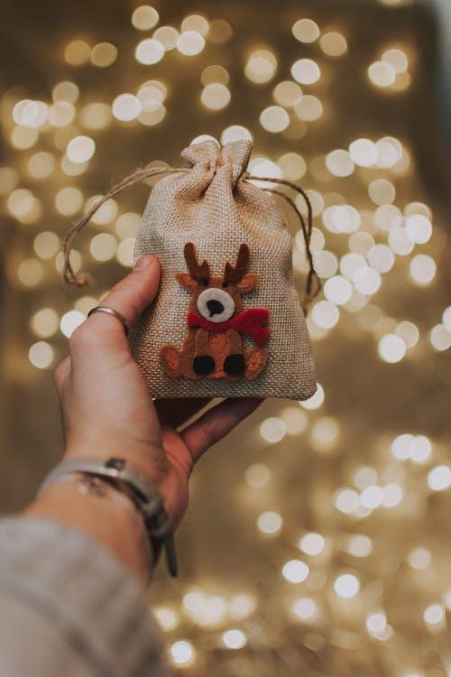 Cute Reindeer Pouch