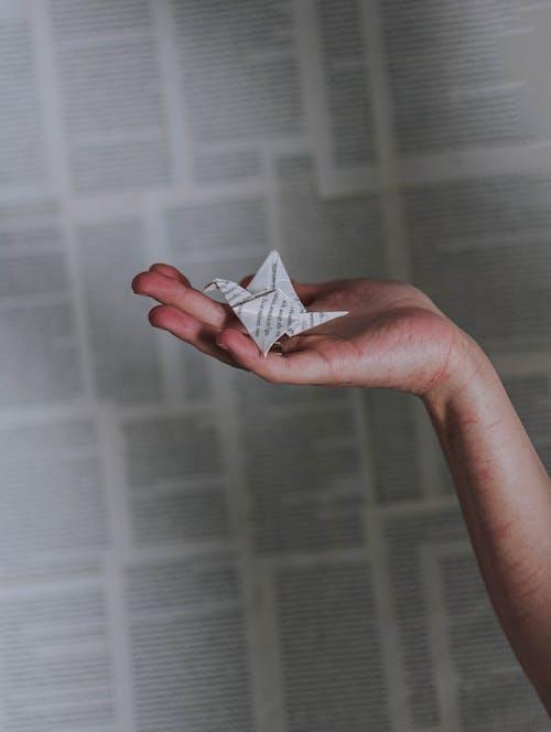 คลังภาพถ่ายฟรี ของ กระดาษ, พับกระดาษ, มือ