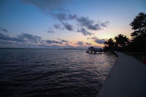 Imagine de stoc gratuită din cape cora, Florida