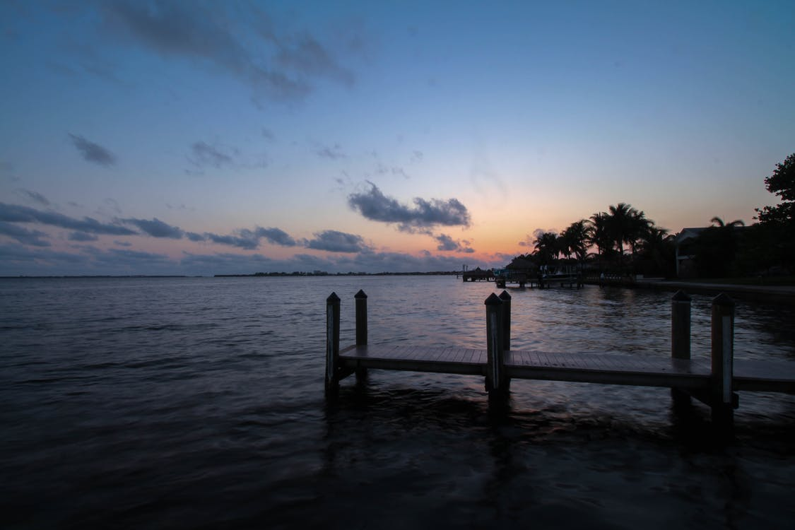 cora-fok, Florida