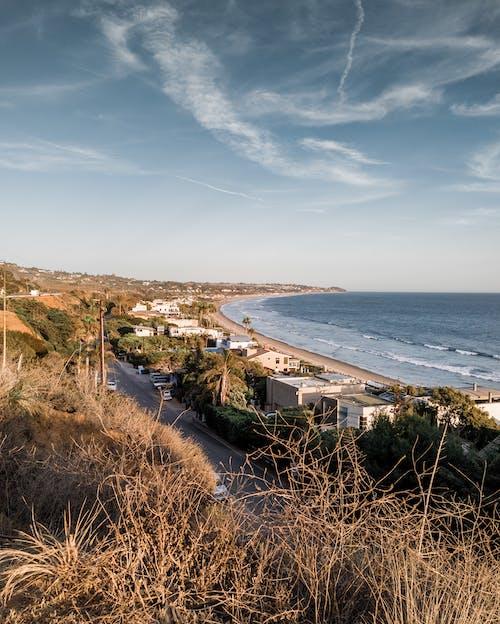 Foto profissional grátis de Califórnia, desafiodemobilidade, litoral, Los Angeles