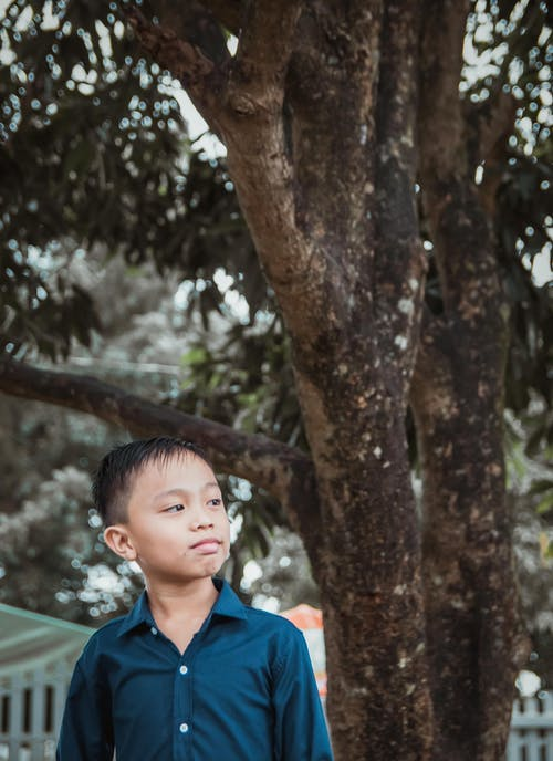 Free stock photo of asian boy, kid, portraits
