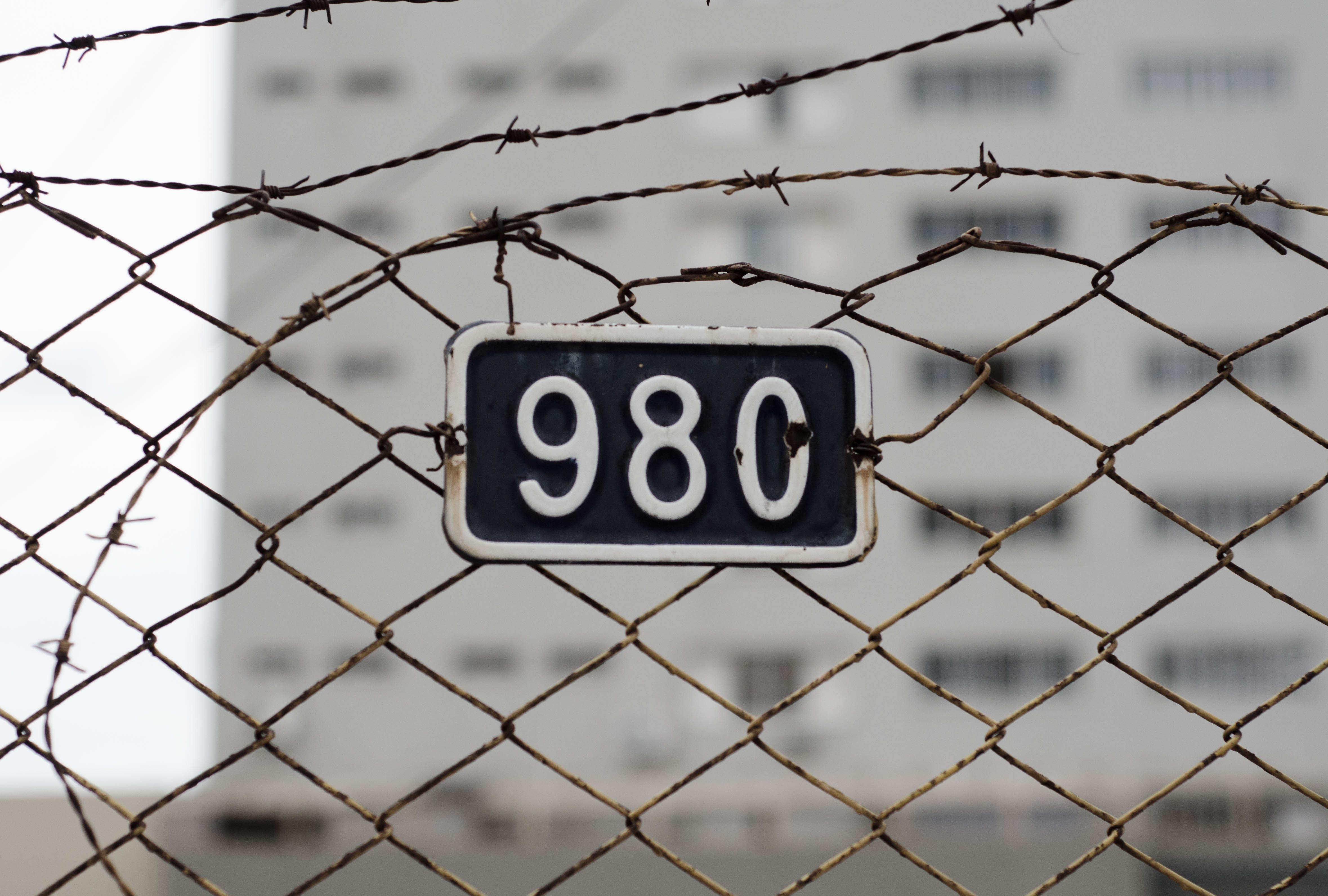 98c Plate on Fence