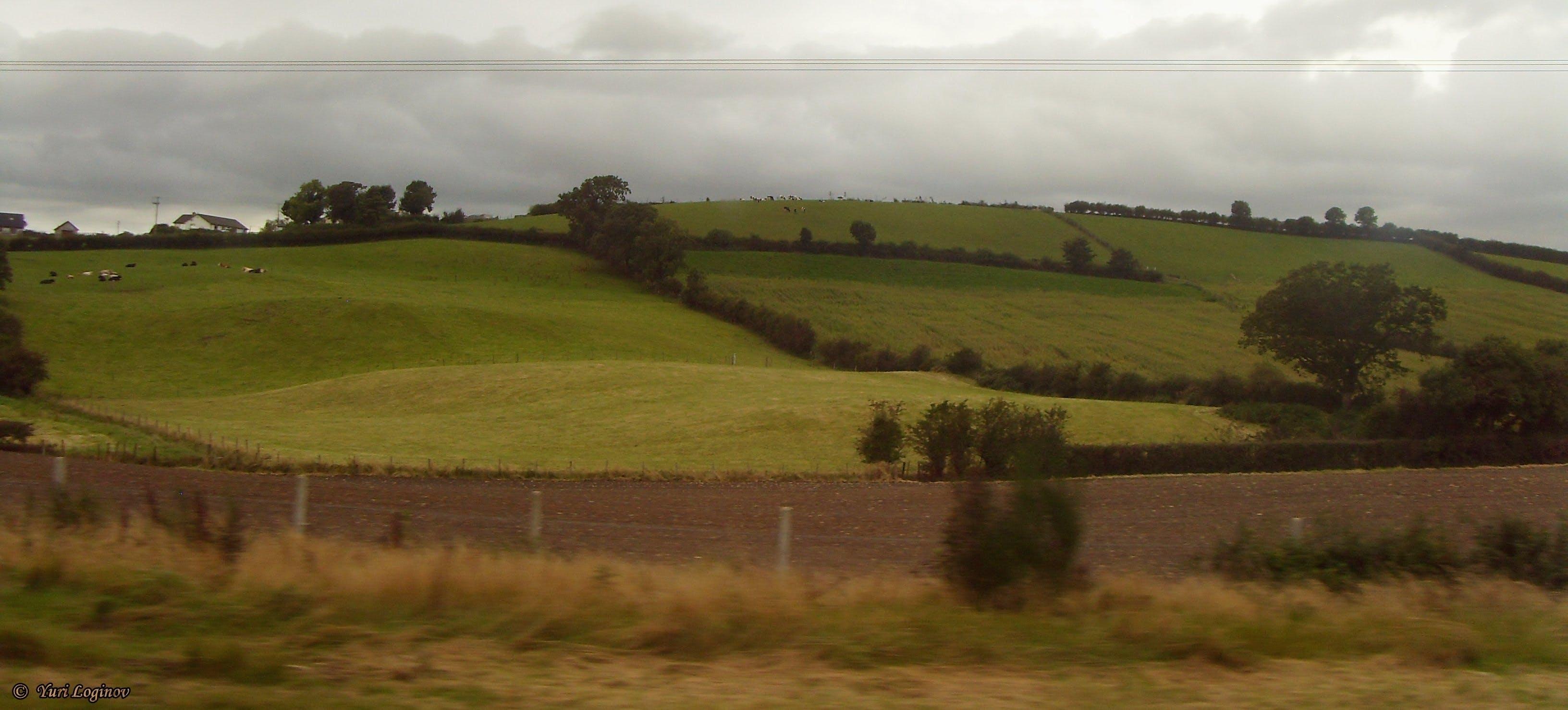 Free stock photo of ireland, Leinster