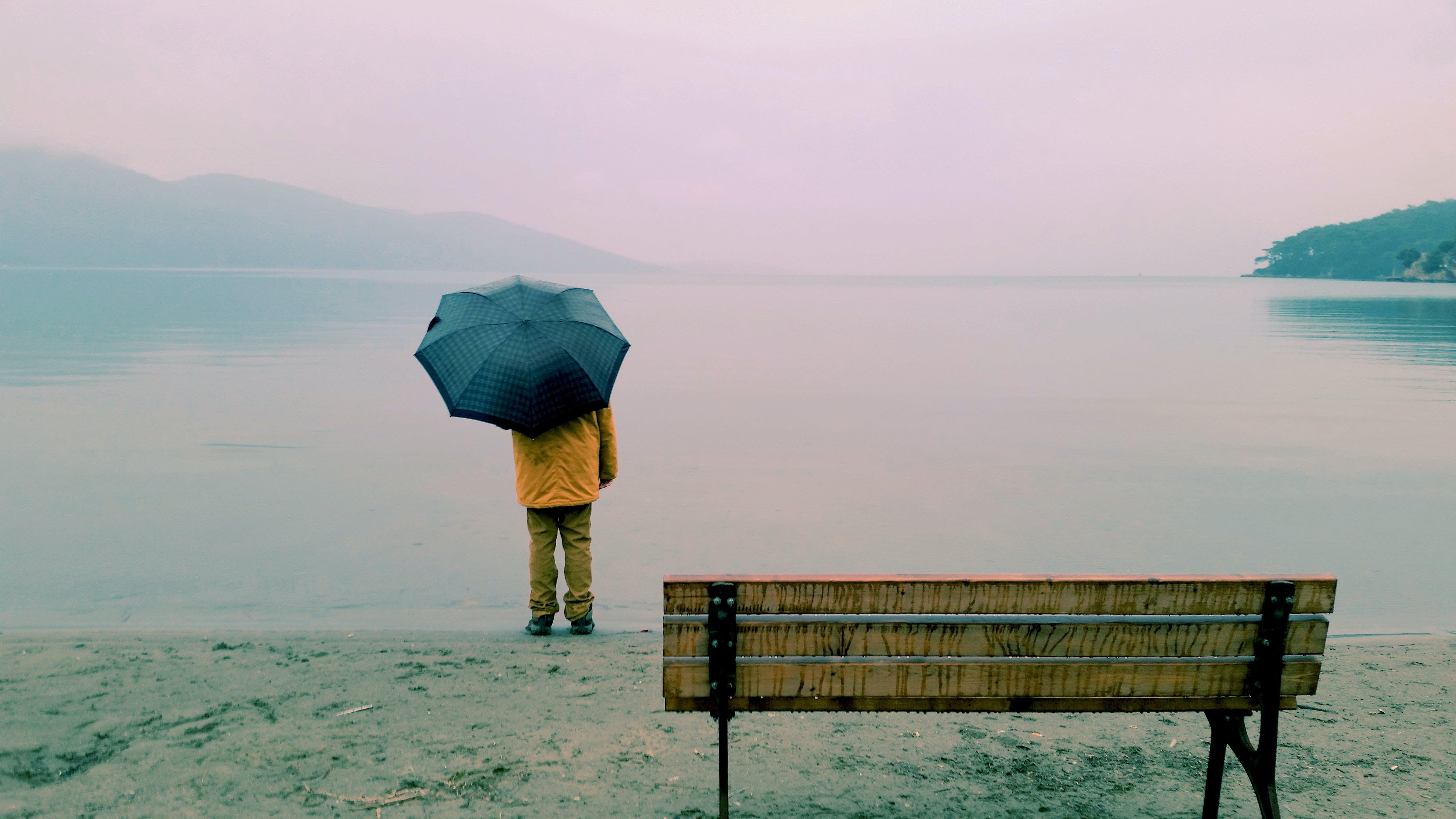 beach, bench, dawn