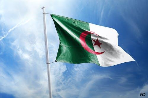 Kostenloses Stock Foto zu algerien, algiers, arabisch