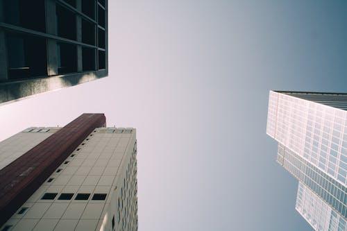 Immagine gratuita di architettura, bicchiere, cielo, edifici