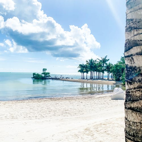 Free stock photo of beach, beach bar, florida, Florida Keys