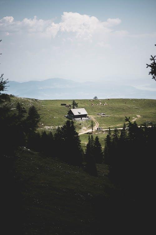 Бесплатное стоковое фото с бунгало, вид, горы, грунтовая дорога
